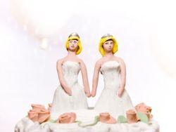 Lesbian-wedding-cake