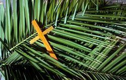 Palmscross