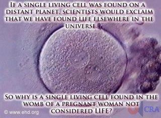 SingleLivingCell