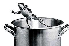 Frog-boiling-pot