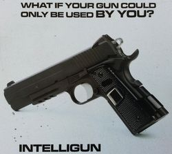 Intelligun