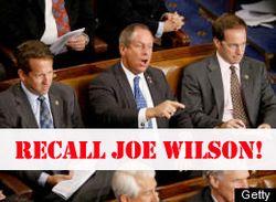 Recall-joe-wilson
