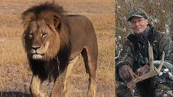 Cecil-lion-hunter-palmer